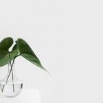 Voor- en nadelen van minimalisme